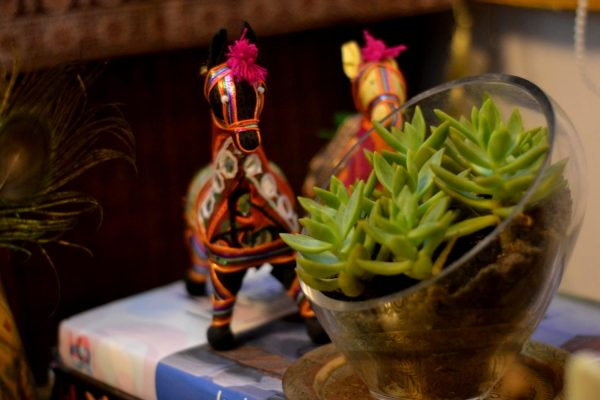 The side view of the mini succulent forest in a glass bowl, along with the ethnic Indian stuffed animals.